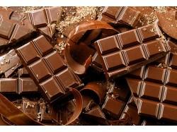Экспертиза шоколада
